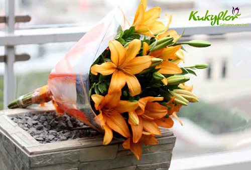 Kukyflor flores de calidad
